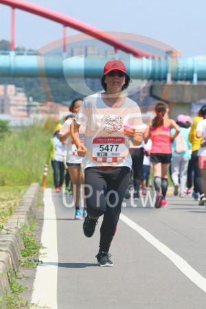 小碧潭公園附近-3():0,2018momof媽咪公益路跑,5477,5K,游錦屏