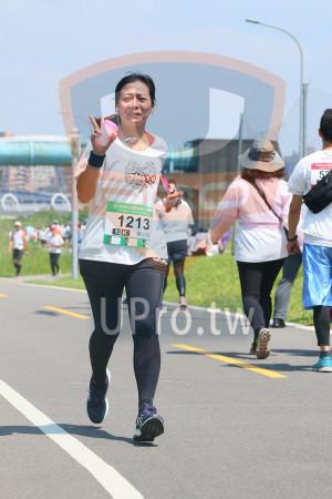 小碧潭公園附近-5():2018momo愛媽啋公益,1213,10K,吳小信