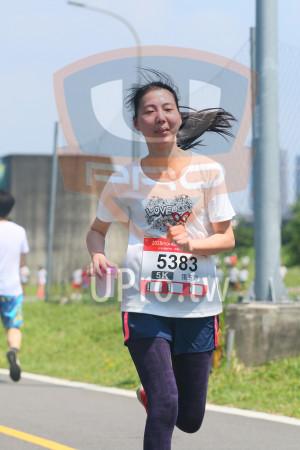 小碧潭公園附近-7():2018moin,5383,Oo