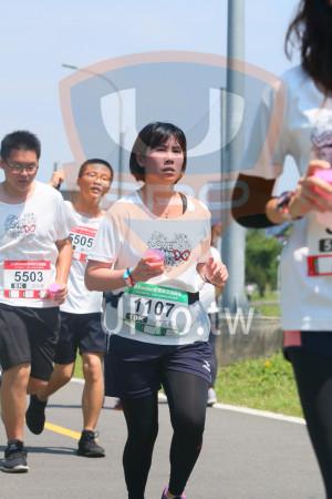 小碧潭公園附近-7():5,505,5503,8momo愛媽咪公益,1107