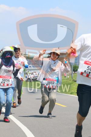 小碧潭公園附近-12():5,5856,5K,5852,吳美滿