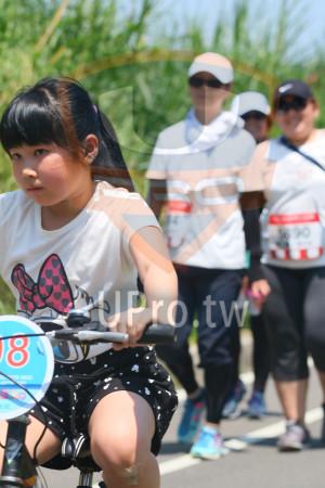 小碧潭公園附近-14():