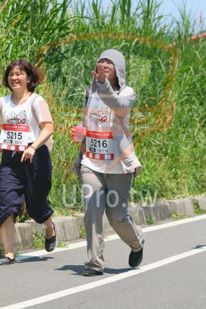 小碧潭公園附近-15():味公益路,5215,5216,5K,張麗芬,黃于珊