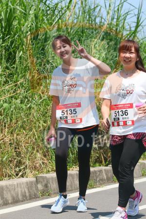 小碧潭公園附近-15():mo愛媽咪公益路跑,201&momo愛媽咪公益路跑,5135,5136,EK1 周佩萱