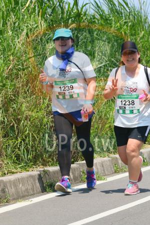小碧潭公園附近-16():momo愛媽咪公益路跑,1239,10K,201&momo愛媽咪公益路跑,1238,郭豫玲