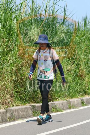 小碧潭公園附近-16():公益路跑,1037,OK,鳳珠