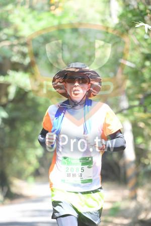 綠色隧道1(中年人):馬拉松 519,27KM,2085,邱勝霖|,芬ネ木,TH,r gent.