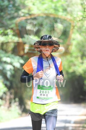 綠色隧道1(中年人):苗栗柯花季馬拉松 sAg,2085,邱勝霖,分木木