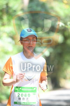 綠色隧道1(中年人):*苗栗桐花季馬拉松..,2080 ,,陳惠美