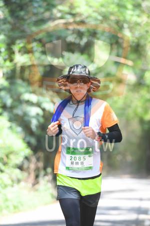 綠色隧道1(中年人):苗栗桐花季馬拉松 5,19,27KM,2085,邱勝霖-onth