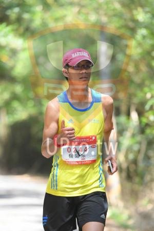 綠色隧道2(中年人):adidaS,困栗桐花季馬拉松,2013 Miaali lang FiSaver Marathon,5,19,0244,42KM