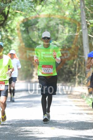 綠色隧道3(中年人):超級馬拉松,張 義雄.。....,馬拉松