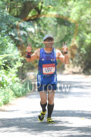 綠色隧道3(中年人):*苗栗桐花季馬拉松5/19,42KM,0253,張善頂
