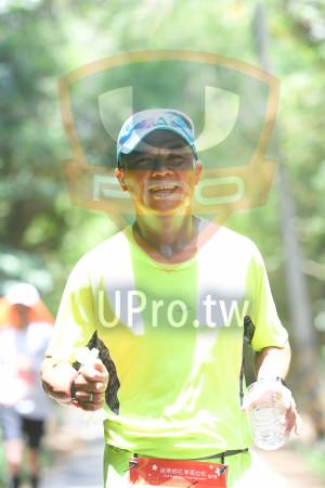 綠色隧道3(中年人):*苗栗桐花季馬拉松,2018 Miaali fang Fiêwer Marathon,5/19