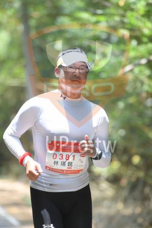 綠色隧道4(中年人):*苗栗桐花季馬拉松 5115,2318 Maol Tong bwe Marathon,0381,林瑞銘 .,42KM