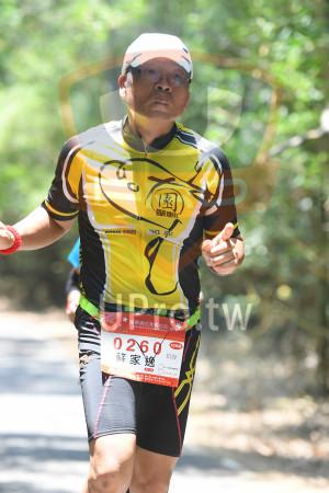 綠色隧道4(中年人):單車11,IN,INCE 2012,AN RIDERS,*苗栗桐花季馬拉松15/19,2018 Miauil Tang Fldwor Marachon,0260 D,蘇家,42KM,E139