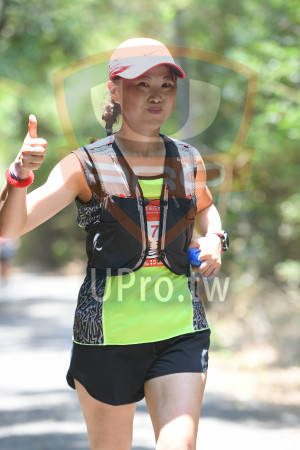 綠色隧道4(中年人):票桐花,Miaoli Tong F