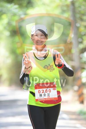 綠色隧道6(中年人):*苗栗桐花季馬拉松5/19,2018 Ma Tong Fow Narathon,0200 T,羅金足,42KM