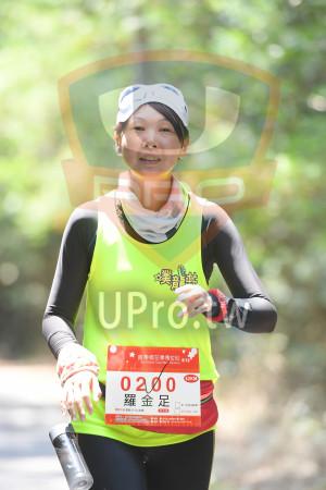 綠色隧道6(中年人):*苗栗桐花季馬拉松5,19,2018 Miacli Tong Flow Marathon,0200,羅金足,42KM