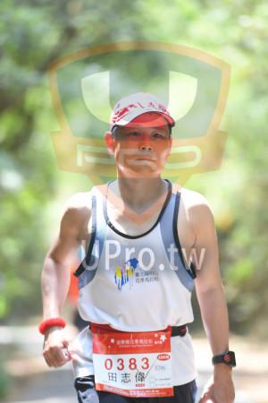 綠色隧道6(中年人):2006,臺北陽明山,花季馬拉松,*苗栗桐te季馬拉松sn,038,42KM,E396,田志偉,CLD