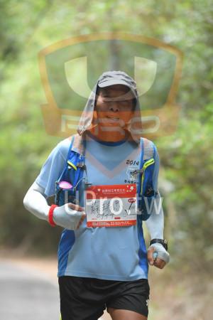 綠色隧道7(中年人):2014,南投趴ジ,*苗栗桐花季馬拉松5,19,2018 Miaai Tang Flower Marathon,42KM