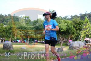 第三梯路跑():主辦.: UPRO運動平咨Whttps://www.u-pro