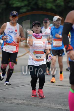 ():TAIWAN,4474,42K女C組,許芷盈,4525,bog