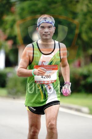 ():HONLUDEMARATHON,屯隔拉松,陳富亮,286