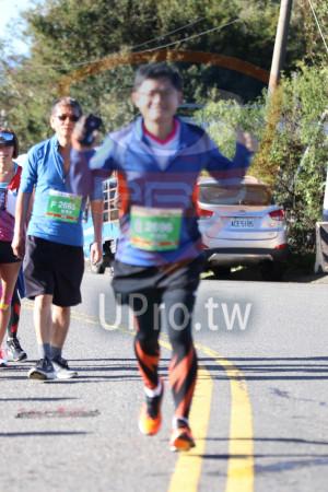 合歡山馬拉松05(Ming Jyun Wang):F 2665,ACE 5185