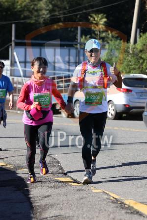 合歡山馬拉松06(Ming Jyun Wang):FIN,651,F 2202,F 2203,'-尤龍生,廖瑞娟