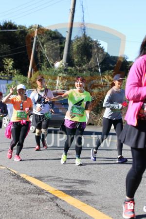合歡山馬拉松06(Ming Jyun Wang):7137,F 2338