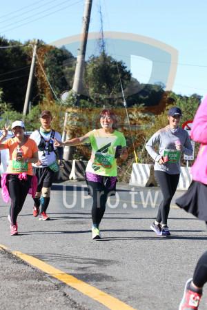 合歡山馬拉松06(Ming Jyun Wang):F 2339,2337,吳媽蓉,F 2338