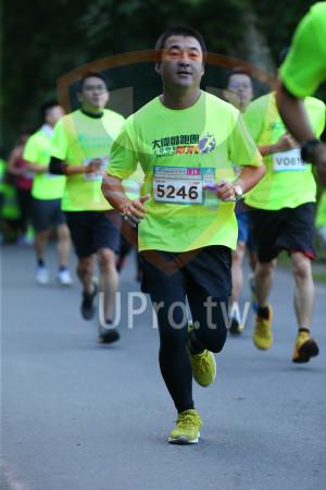 ():大偉酷跑團,vos,5246