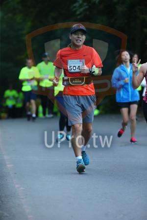 ():504,2015,金城盃路跑