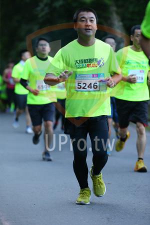 ():大偉酷跑團104,COOLD,3KT,319,5246