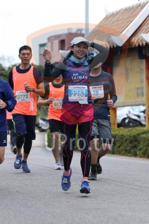 金門馬拉松-古寧頭04(MING JYUN WANG):RUN,TAIWAN,2017,2010金門馬拉松,Q金門馬拉松,鋧馮柏蛤42.195KM。,3773,2250 2,28,林佑倫,403