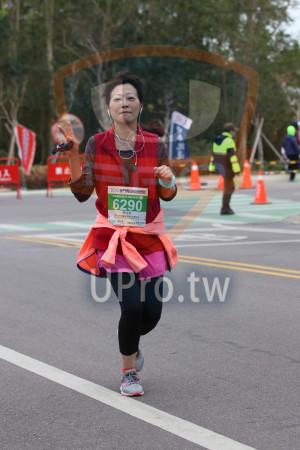金門馬拉松-終點前500公尺08(MING JYUN WANG):2019金門馬拉松,半程馬拉松210975KM,6290,周文玲