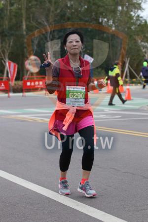 ():2019金門馬拉松,半程馬拉松210975KM,6290,周文玲