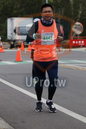金門馬拉松-終點前500公尺10(MING JYUN WANG):2019金門馬拉松Knm탰,半程馬拉621 0975KM,4442,陳彥友,禁止停車,4442 Es