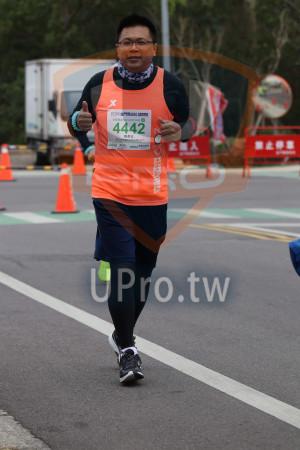 金門馬拉松-終點前500公尺10(MING JYUN WANG):2019金門馬拉松,半,,拉忪2L·0975KM,4442,陳彥友,£8入? : 禁止@s,4442.
