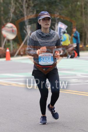 金門馬拉松-終點前500公尺15(MING JYUN WANG):019金門馬拉松KINMEN,全程馬拉松42.195KM,2484,許家嘉