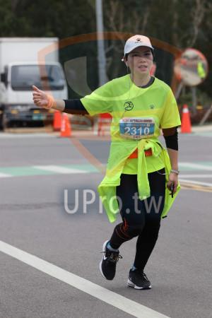 金門馬拉松-終點前500公尺15(MING JYUN WANG):2019金門馬拉松,A KINMEN,全程馬拉松42.195KM,2310,游曉玲