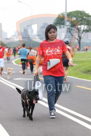 ():奔跑電,狗小孩公益路跑