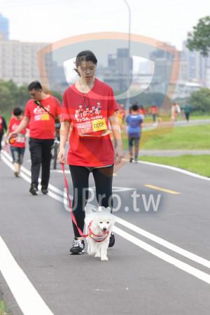 賽道01-03(Ming Jyun Wang):PHOTO,VIP 032
