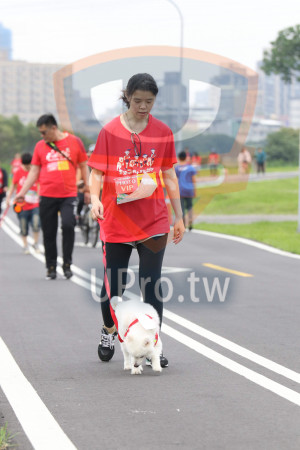 賽道01-03(Ming Jyun Wang):奔跑螢狗トす,PHOTO,VIP