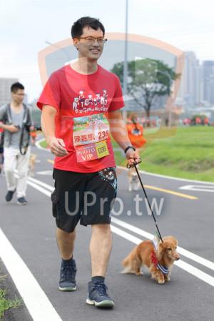 賽道01-03(Ming Jyun Wang):2019,陳嘉凱236,2019奔跳吧)狗小,PHOTO,VIP,DEb