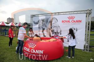 起、終點-01():ROYAL CANIN,ng,,專家源自對貓犬的熱,Goa