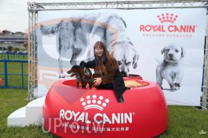 起、終點-01():ROYAL CANIN,寵物營養學專家,源自對貓犬的熱愛,寵物營養季專家,源自對貓犬的熱11,Goo
