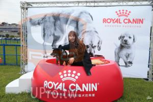 起、終點-01():ROYAL CANIN,寵物營養學專家源自對貓式的熱愛,寵物營養學專家,源自對貓犬的熱愛,Goo