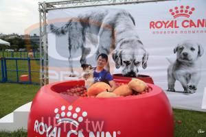 起、終點-01():ROYAL CAN,寵物營養學專家源自對貓犬的,Goo